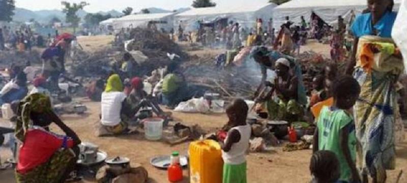 नाइजर मरुभूमि क्षेत्रमा पानीको अभावमा ४४ आप्रवासीको मृत्यु