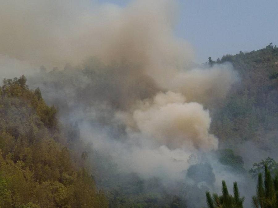 बाँकेको कोहलपुरमा आगलागी १३ घरसहित गोठ जलेर नष्ट