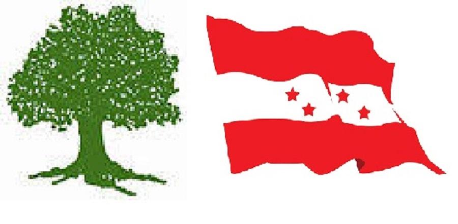 पाल्पामा काँग्रेसका तीन कार्यकर्ता कारबाहीमा